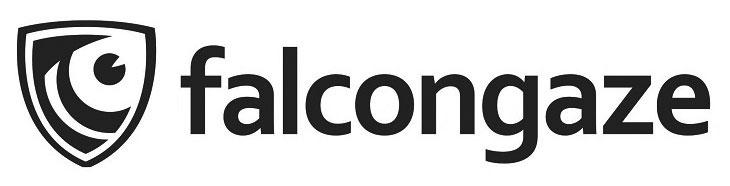 FalconGaze